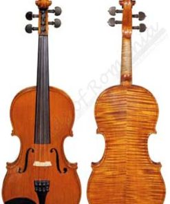 master violin musical instrument