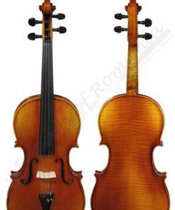 Advanced Viola musical instrument