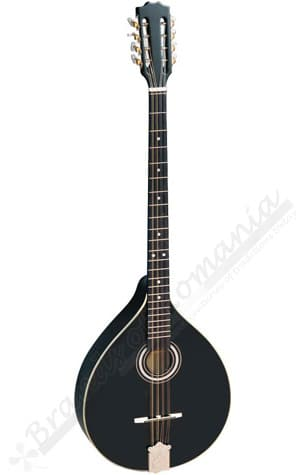 Hora Irish Bouzouki Black Color. Best musical instruments