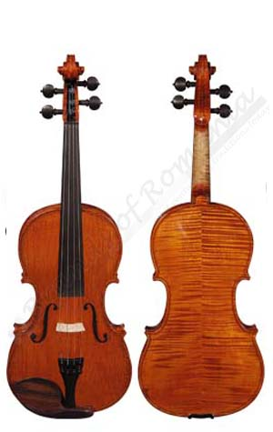 Professional Violin musical instrument