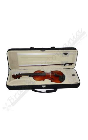 Professional Violin case 4/4