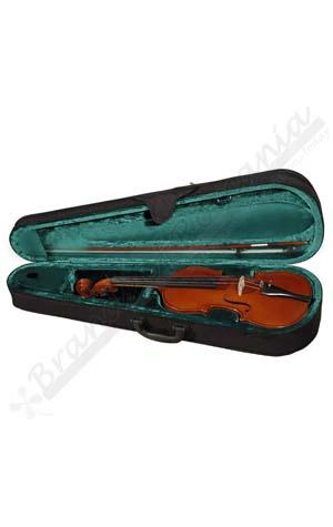 Viola case