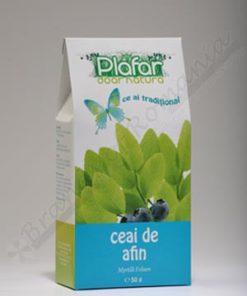 blueberry bio tea