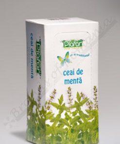 mint tea bio