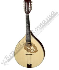 Hora Mandola RG2, musical instrument