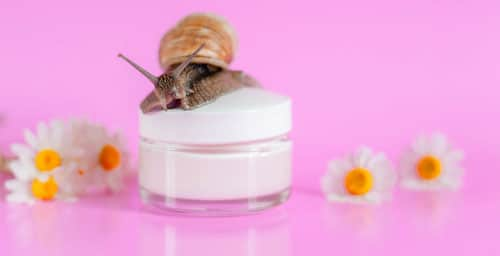 romanian-snail-mucus-extract-cosmetics